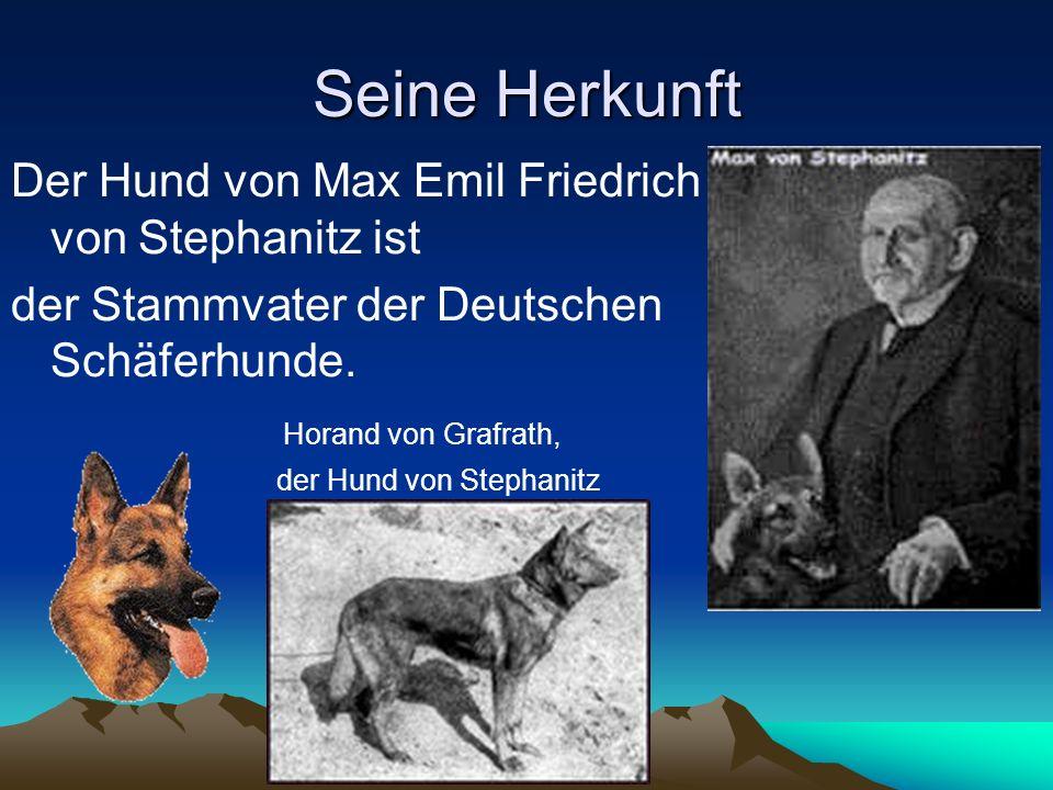 Seine Herkunft Der Hund von Max Emil Friedrich von Stephanitz ist