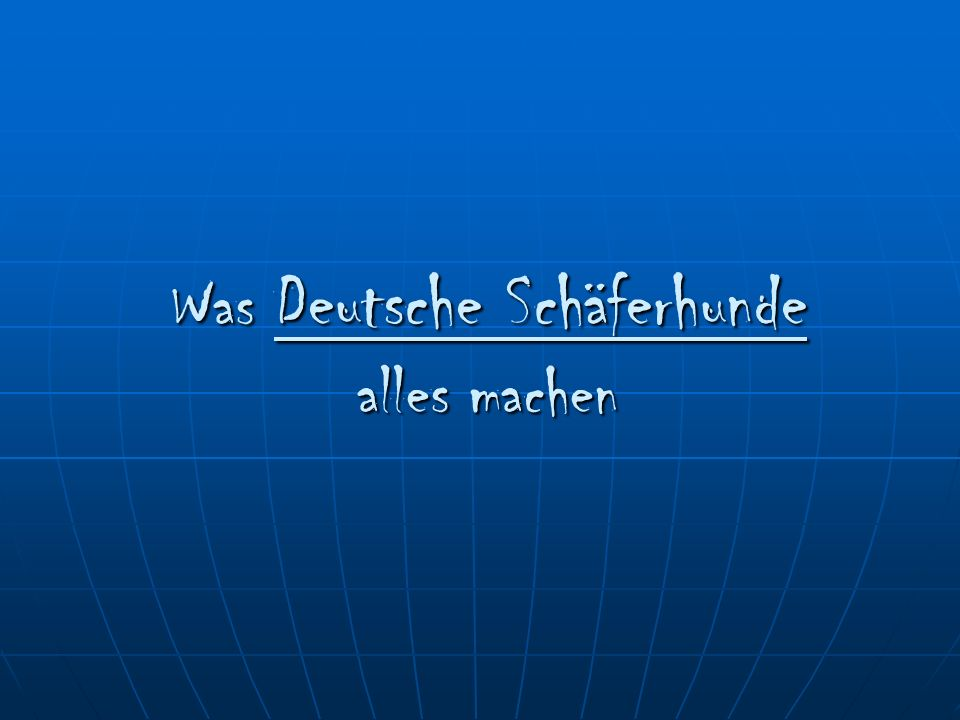 Was Deutsche Schäferhunde alles machen