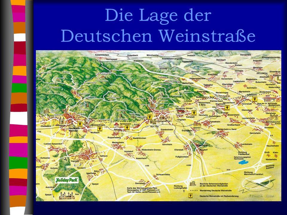 Die Lage der Deutschen Weinstraße