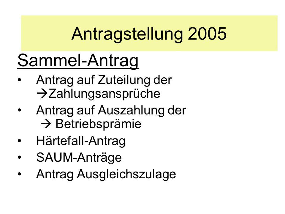 Antragstellung 2005 Sammel-Antrag