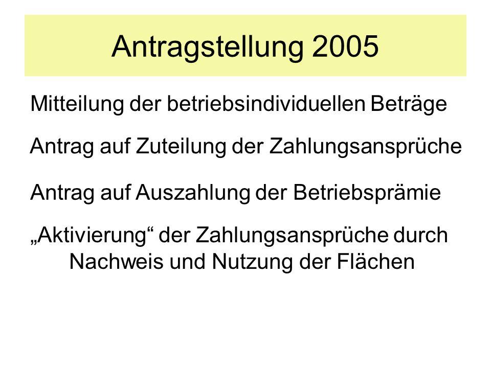 Antragstellung 2005 Mitteilung der betriebsindividuellen Beträge
