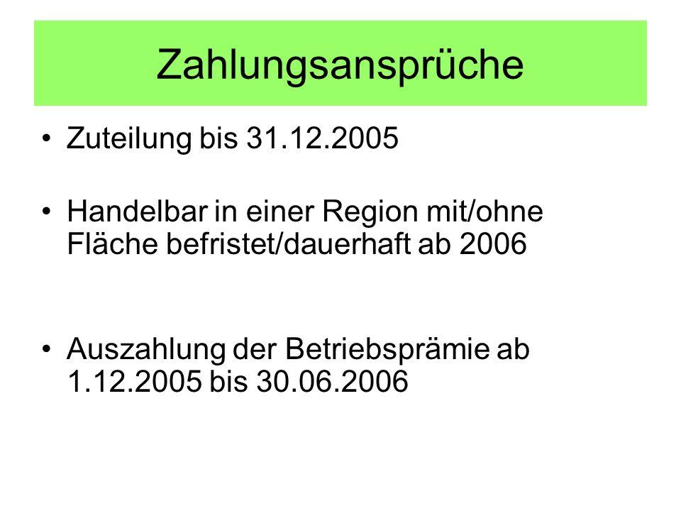 Zahlungsansprüche Zuteilung bis 31.12.2005