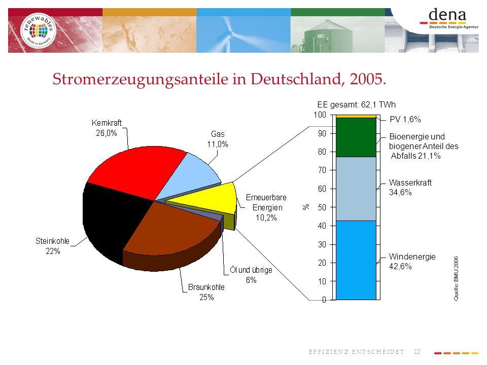 Stromerzeugungsanteile in Deutschland, 2005.