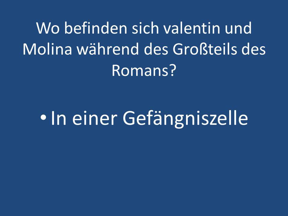 Wo befinden sich valentin und Molina während des Großteils des Romans