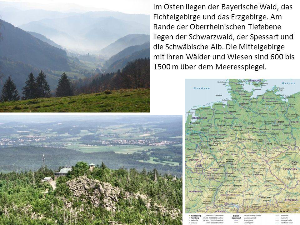 Im Osten liegen der Bayerische Wald, das Fichtelgebirge und das Erzgebirge.