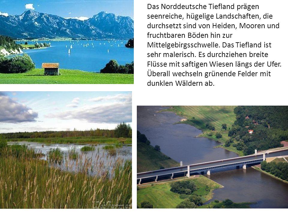 Das Norddeutsche Tiefland prägen seenreiche, hügelige Landschaften, die durchsetzt sind von Heiden, Mooren und fruchtbaren Böden hin zur Mittelgebirgsschwelle.