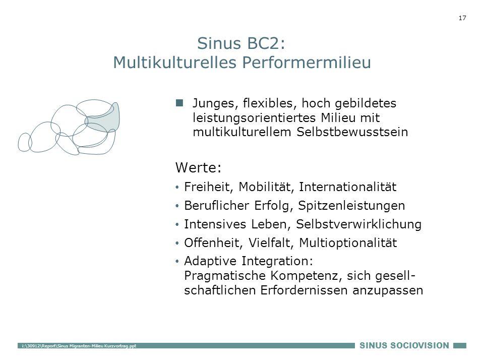 Sinus BC2: Multikulturelles Performermilieu