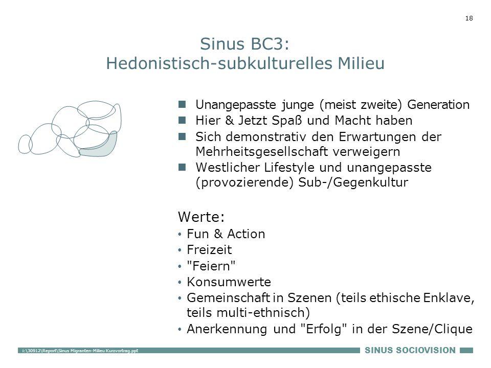 Sinus BC3: Hedonistisch-subkulturelles Milieu
