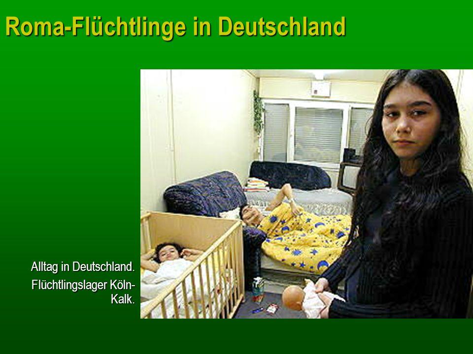 Roma-Flüchtlinge in Deutschland