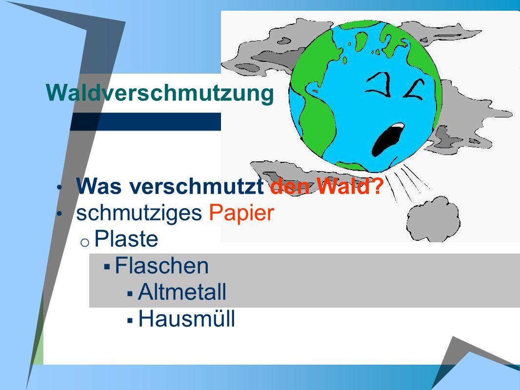 Waldverschmutzung Plaste Flaschen Altmetall Hausmüll