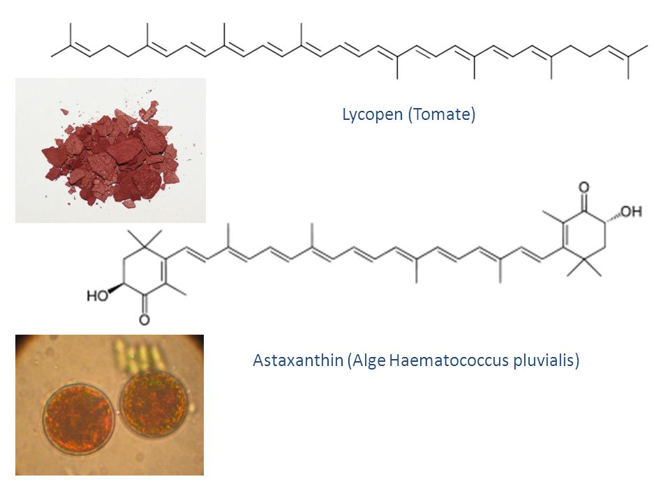 Lycopen (Tomate) Astaxanthin (Alge Haematococcus pluvialis)