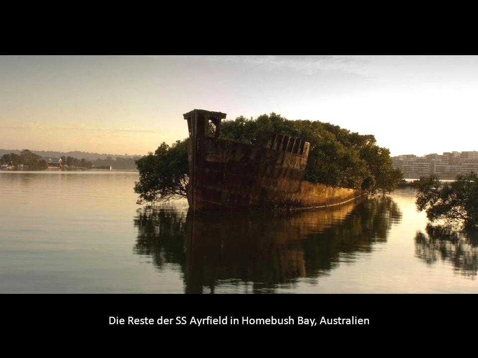 Die Reste der SS Ayrfield in Homebush Bay, Australien