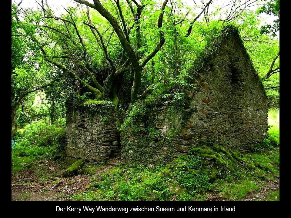 Der Kerry Way Wanderweg zwischen Sneem und Kenmare in Irland