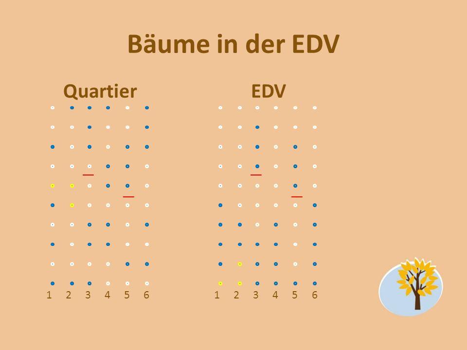 Bäume in der EDV Quartier EDV 1 2 3 4 5 6 1 2 3 4 5 6 20-25 weiß