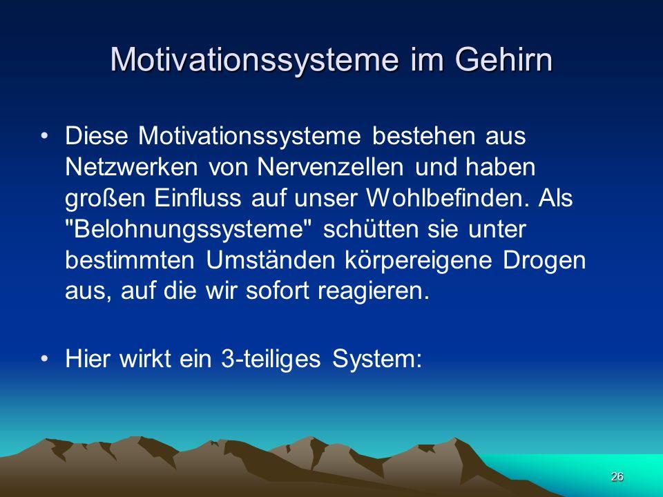 Motivationssysteme im Gehirn
