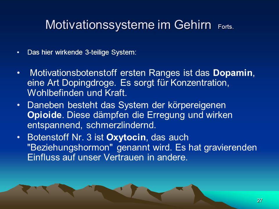 Motivationssysteme im Gehirn Forts.
