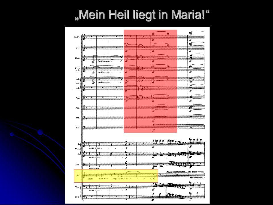 """""""Mein Heil liegt in Maria!"""