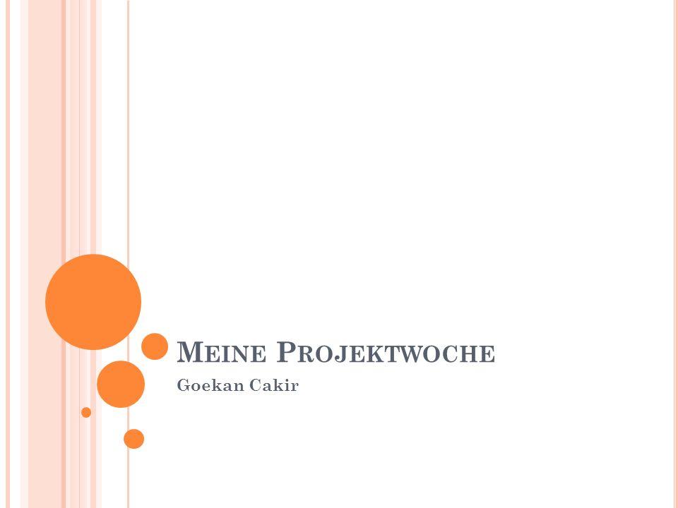 Meine Projektwoche Goekan Cakir