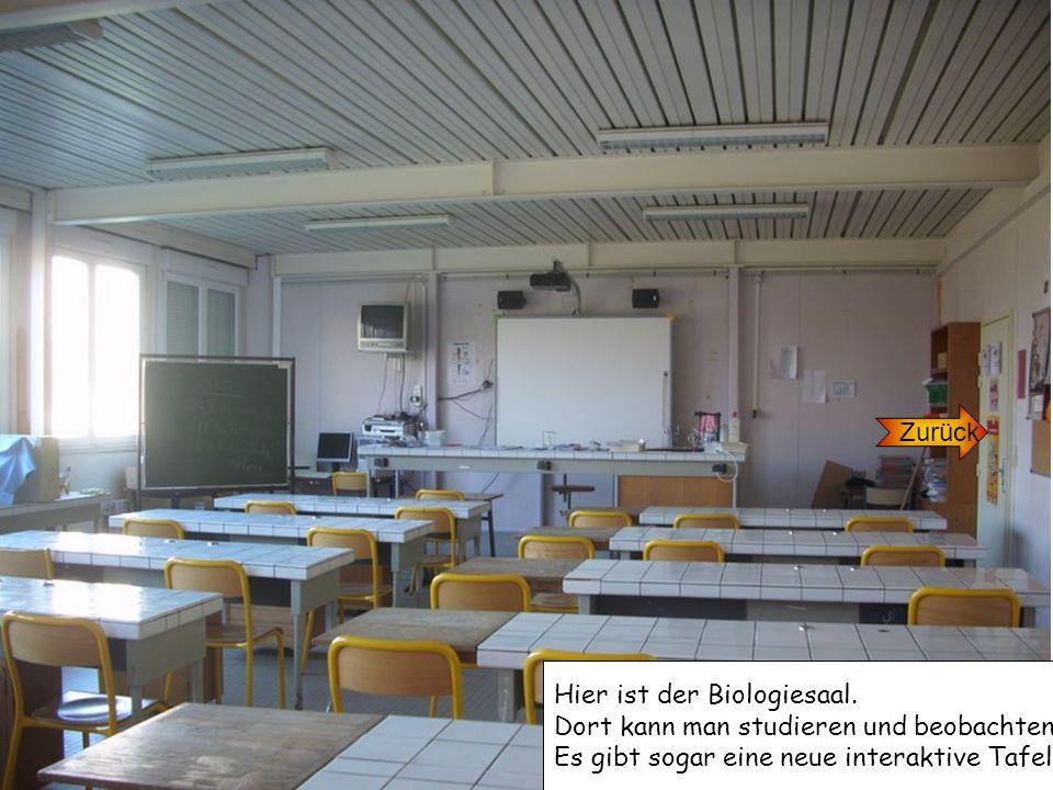 Zurück Hier ist der Biologiesaal. Dort kann man studieren und beobachten.