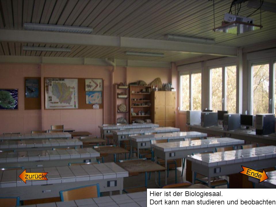 Ende zurück Hier ist der Biologiesaal. Dort kann man studieren und beobachten.