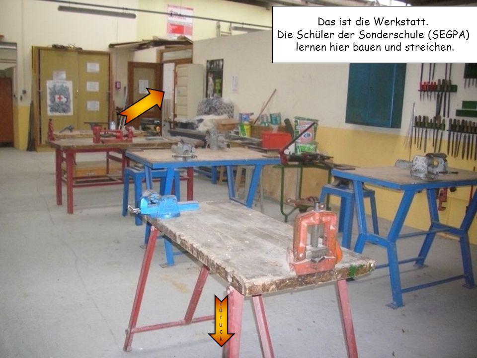 Die Schüler der Sonderschule (SEGPA) lernen hier bauen und streichen.