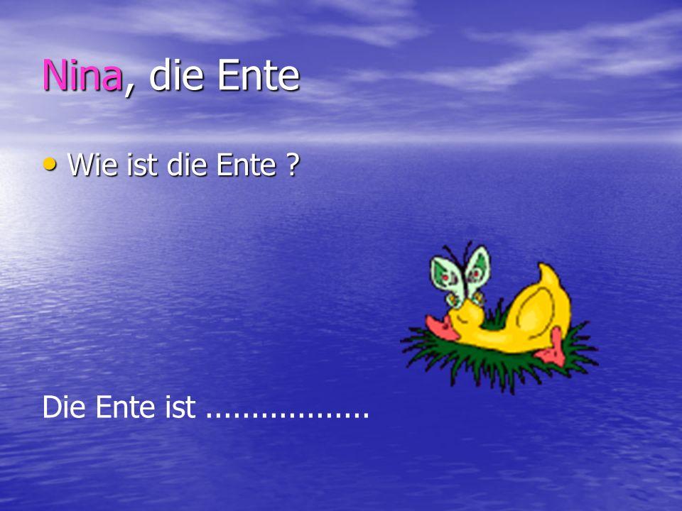 Nina, die Ente Wie ist die Ente Die Ente ist ..................
