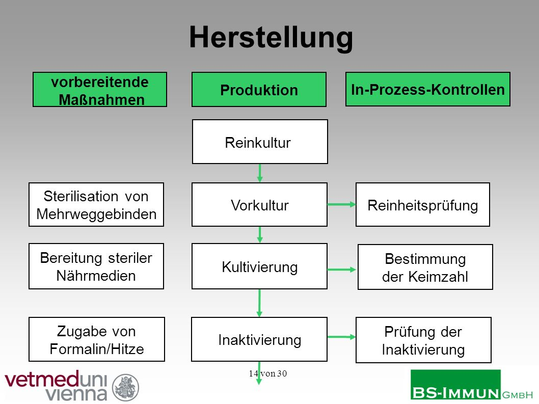 vorbereitende Maßnahmen In-Prozess-Kontrollen