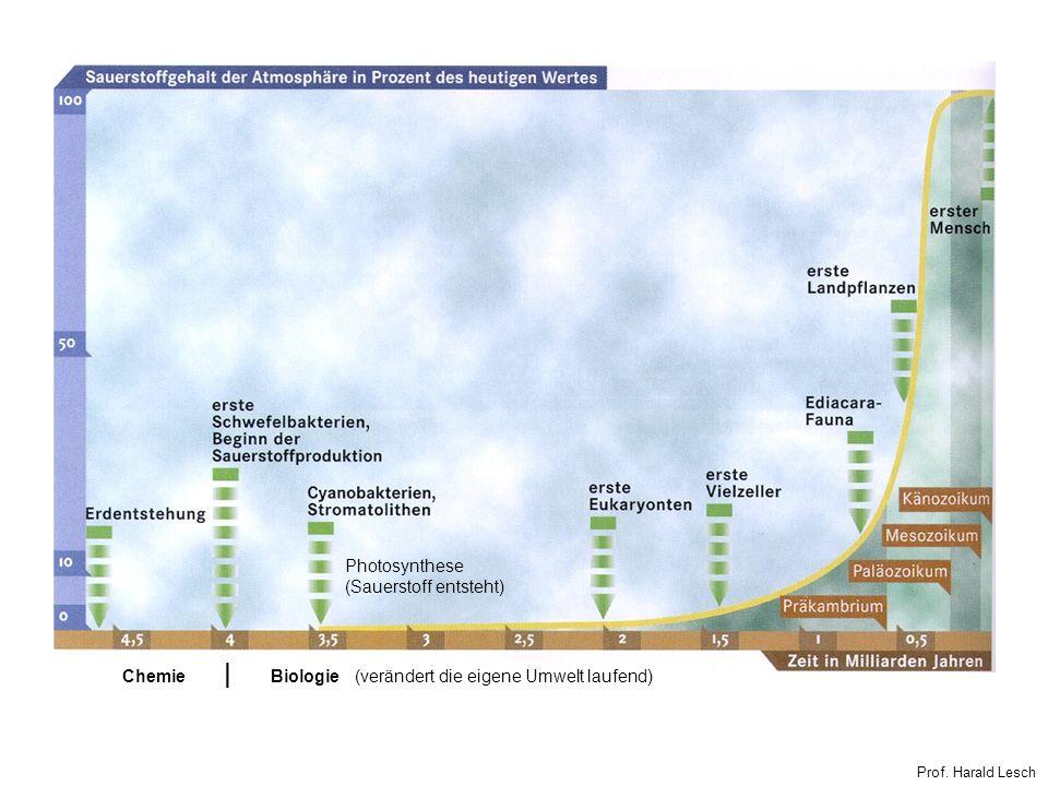   Photosynthese (Sauerstoff entsteht) Chemie