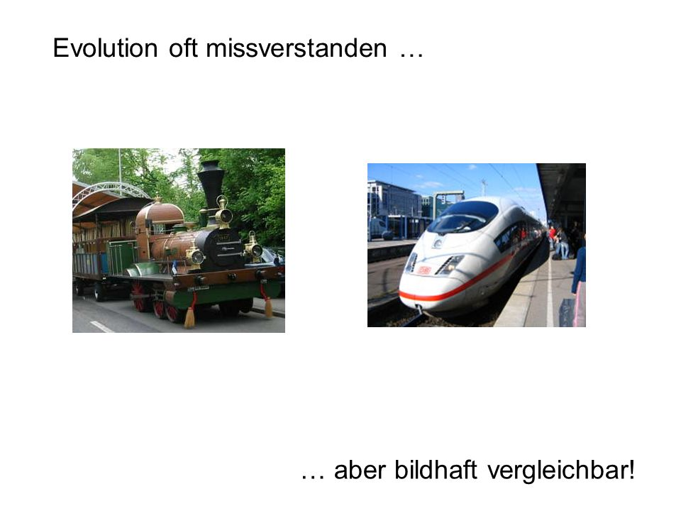 Evolution oft missverstanden …