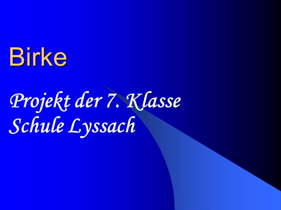 Projekt der 7. Klasse Schule Lyssach