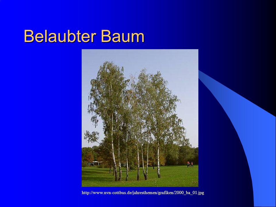 Belaubter Baum http://www.nvn-cottbus.de/jahresthemen/grafiken/2000_ba_01.jpg