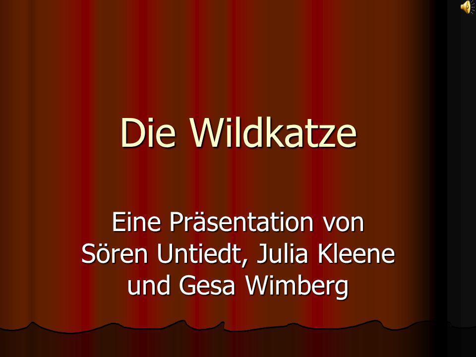 Eine Präsentation von Sören Untiedt, Julia Kleene und Gesa Wimberg