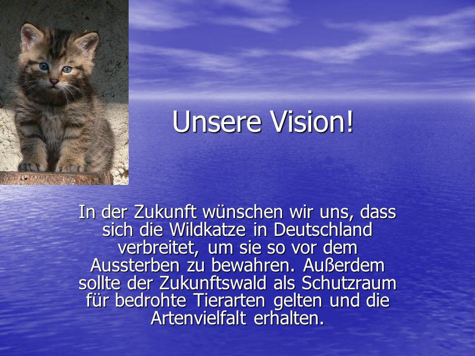 Unsere Vision!