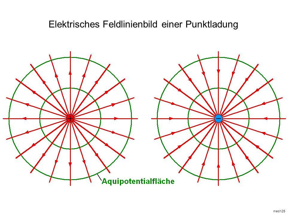 Elektrisches Feldlinienbild einer Punktladung