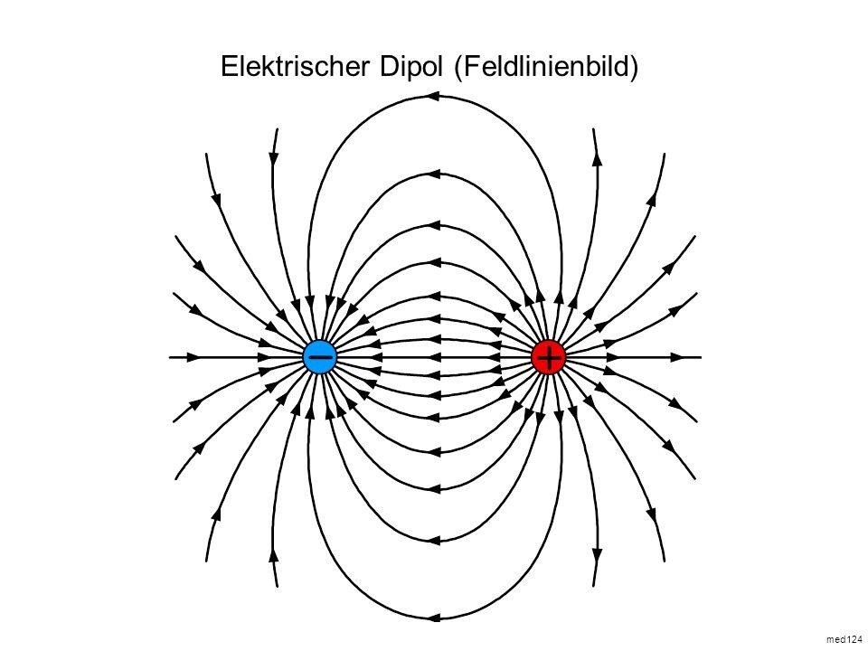 Elektrischer Dipol (Feldlinienbild)
