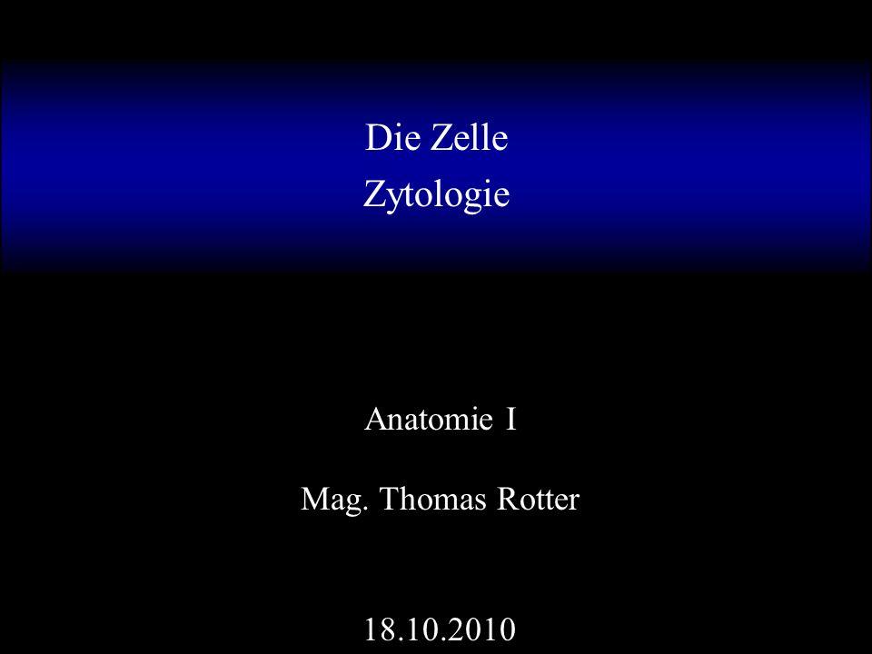 Die Zelle Zytologie Anatomie I Mag. Thomas Rotter ppt video online ...