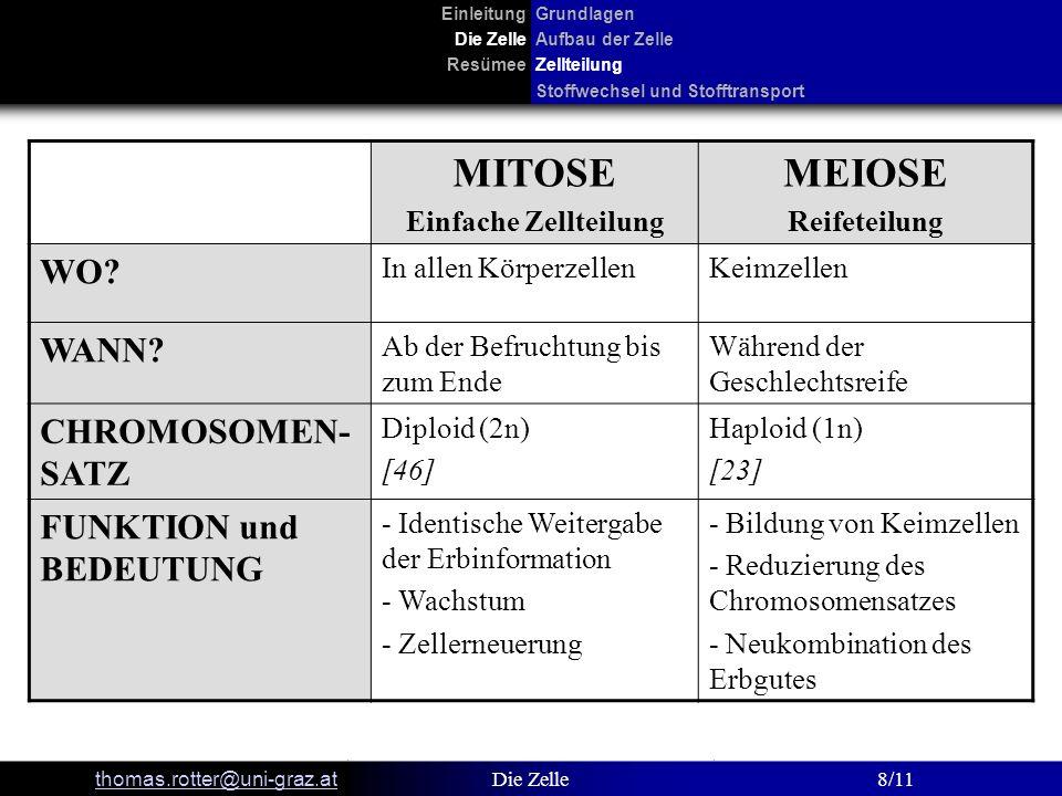 MITOSE MEIOSE WO WANN CHROMOSOMEN-SATZ FUNKTION und BEDEUTUNG
