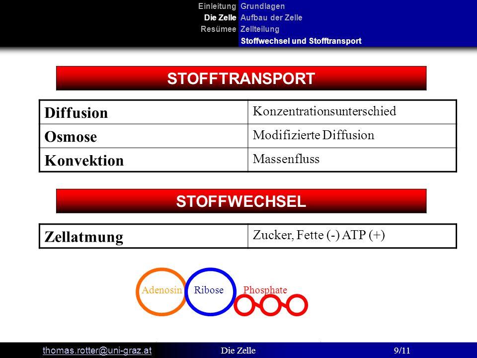 STOFFTRANSPORT STOFFWECHSEL