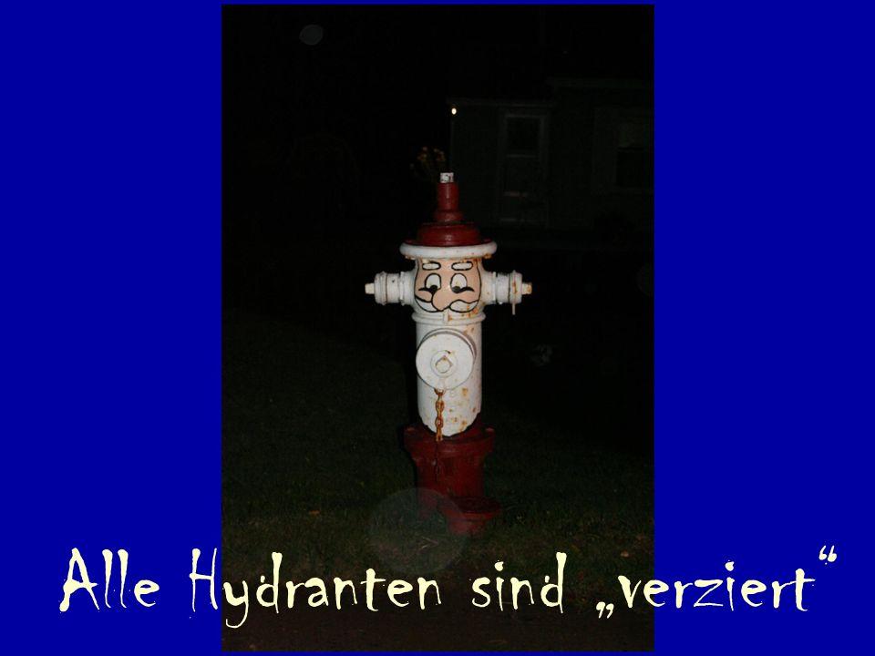 """Alle Hydranten sind """"verziert"""