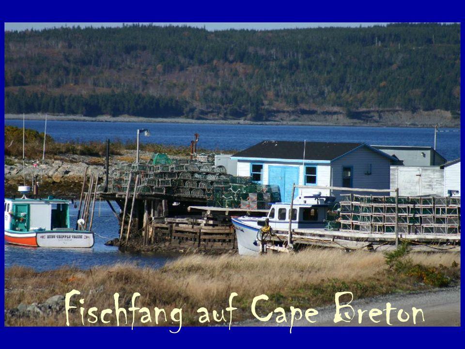 Fischfang auf Cape Breton