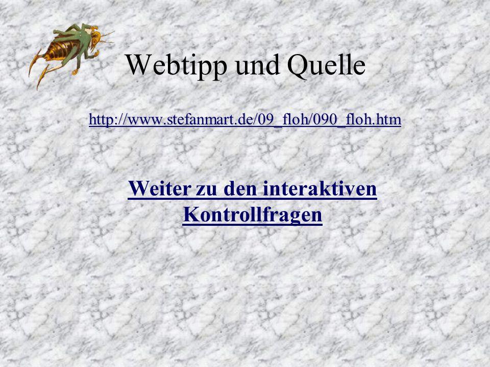 Weiter zu den interaktiven Kontrollfragen