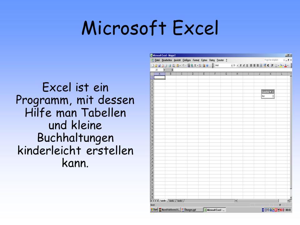 Microsoft Excel Excel ist ein Programm, mit dessen Hilfe man Tabellen und kleine Buchhaltungen kinderleicht erstellen kann.