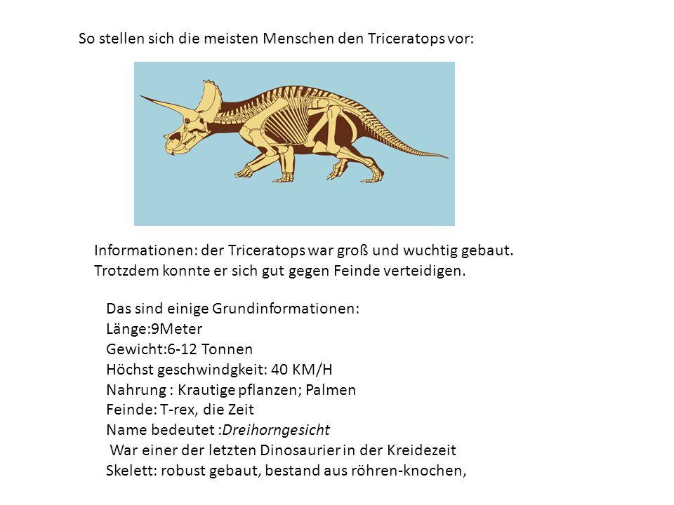 So stellen sich die meisten Menschen den Triceratops vor: