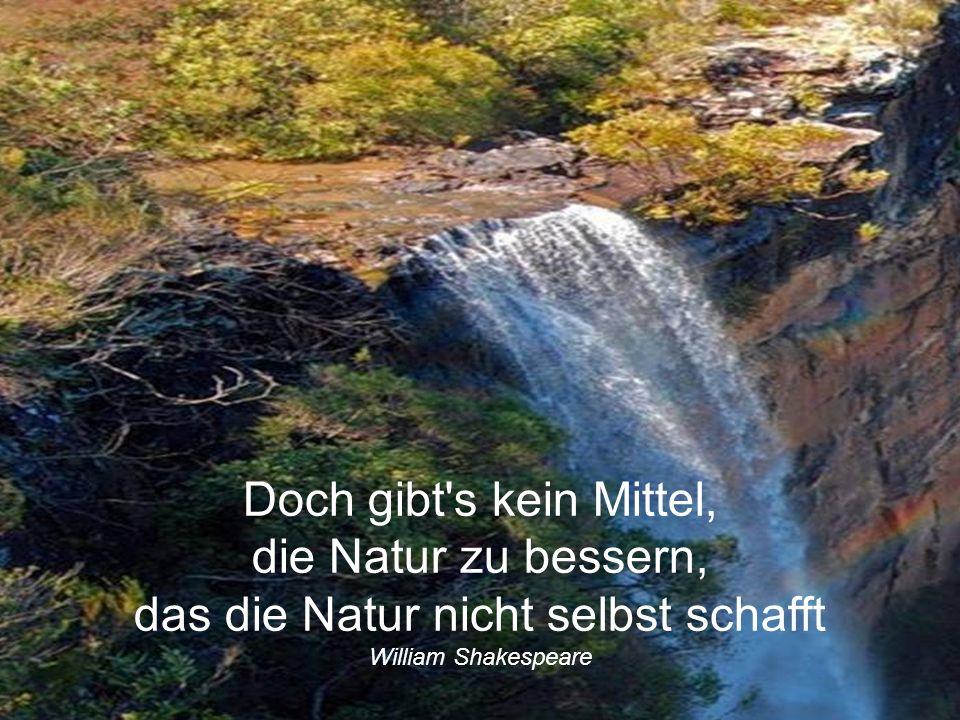 Doch gibt s kein Mittel, die Natur zu bessern, das die Natur nicht selbst schafft