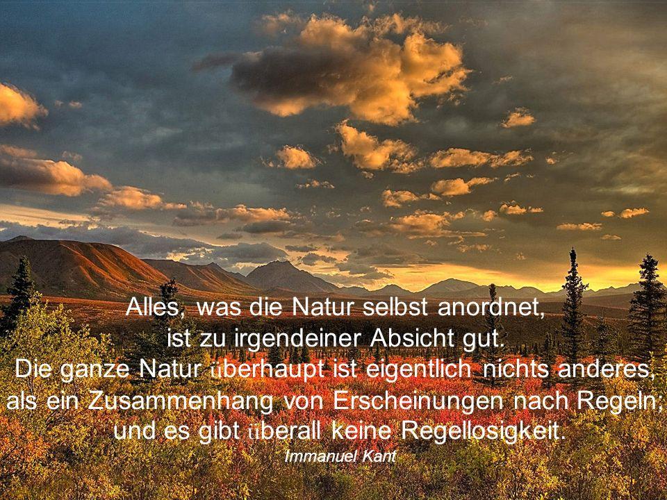 Alles, was die Natur selbst anordnet, ist zu irgendeiner Absicht gut.