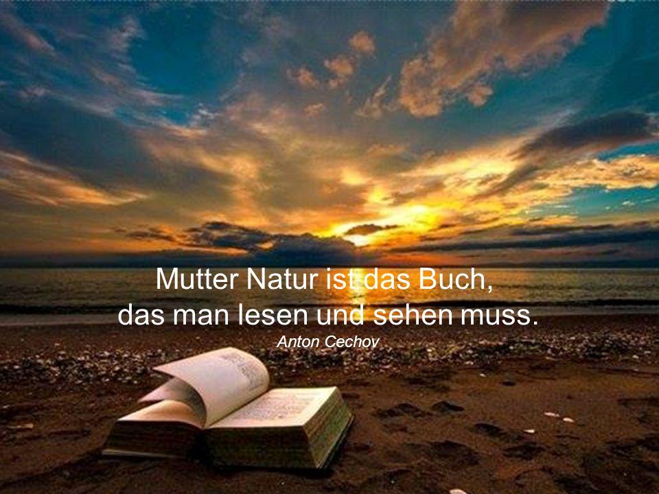 Mutter Natur ist das Buch, das man lesen und sehen muss.