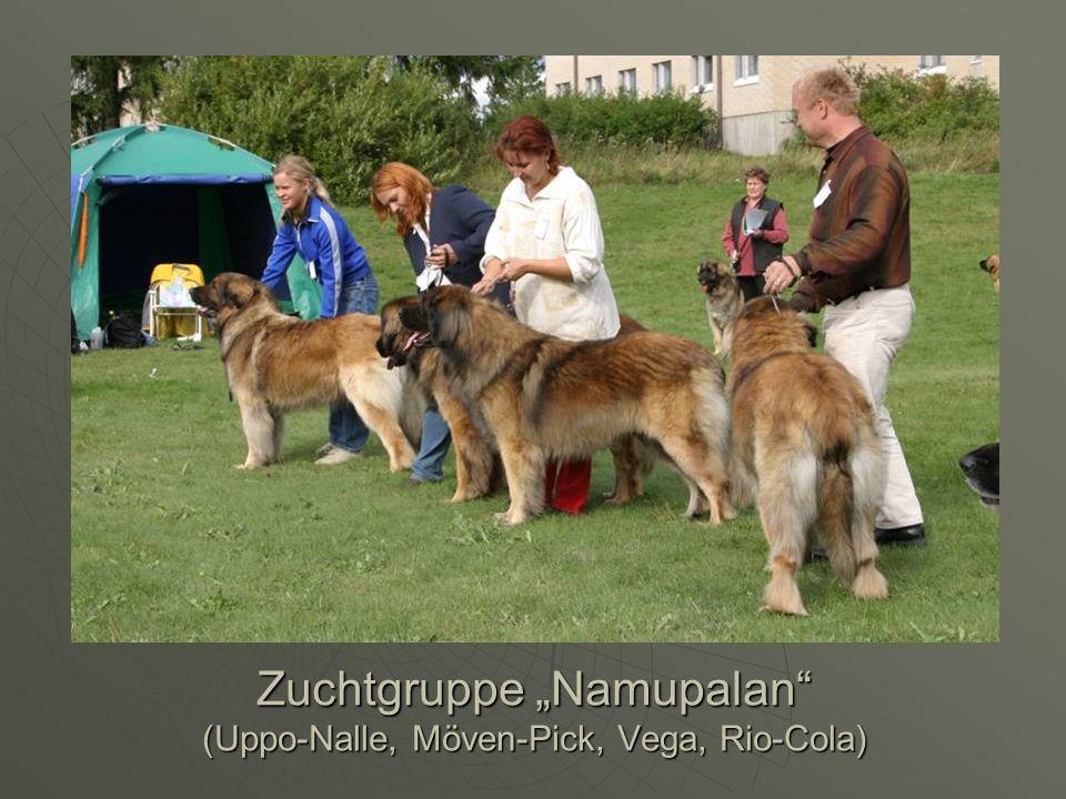 "Zuchtgruppe ""Namupalan (Uppo-Nalle, Möven-Pick, Vega, Rio-Cola)"