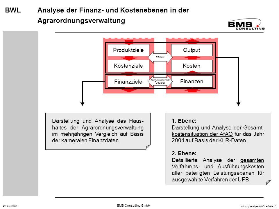 BWL Analyse der Finanz- und Kostenebenen in der