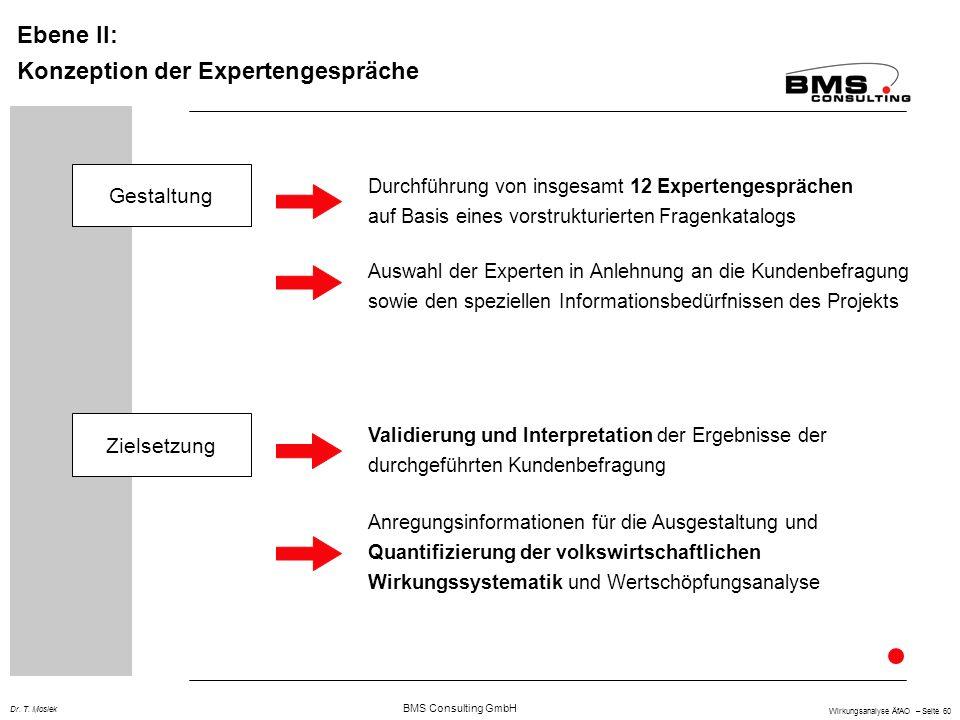 Konzeption der Expertengespräche