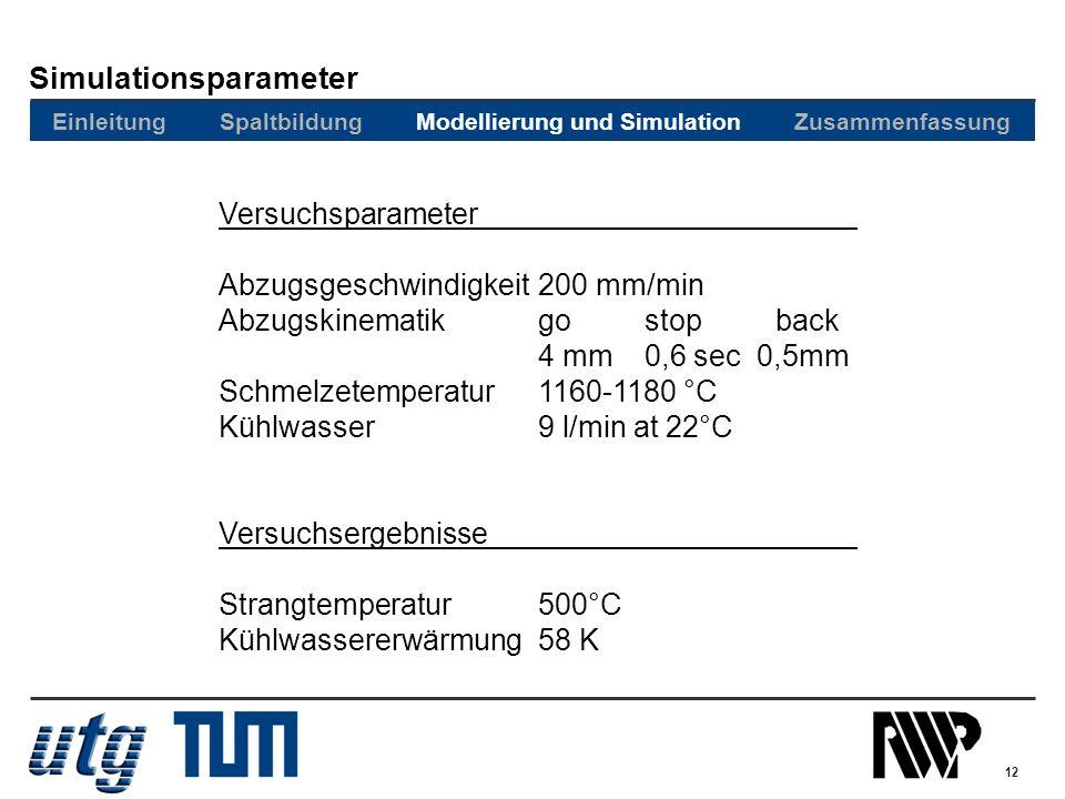 Simulationsparameter